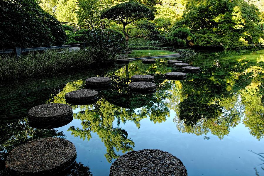 Path To The Green Garden Photograph