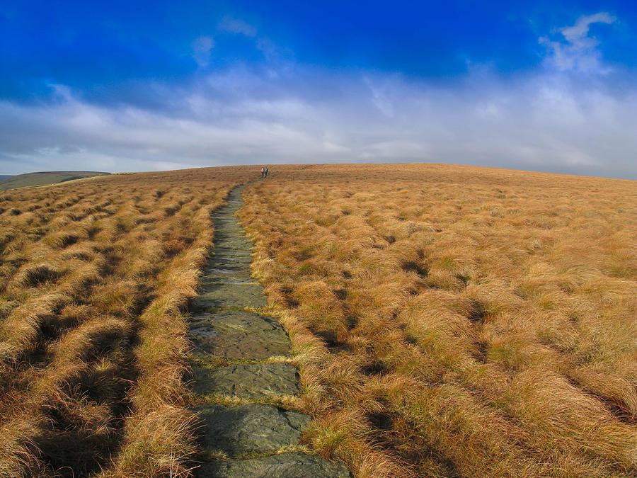 Pathway Through he Moor by Stephen Haunts