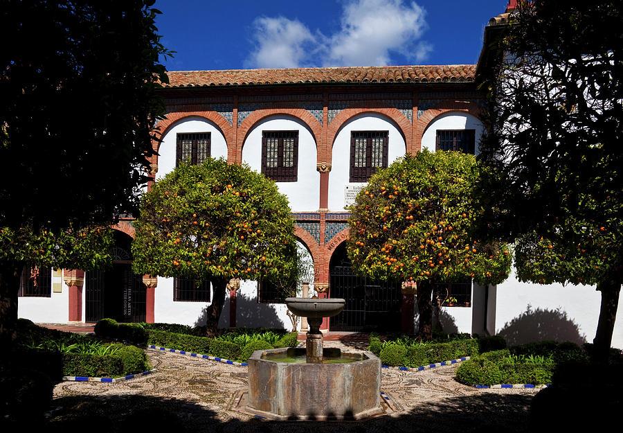 Color Image Photograph - Patio Del Museo Cordobes De Bellas by Panoramic Images