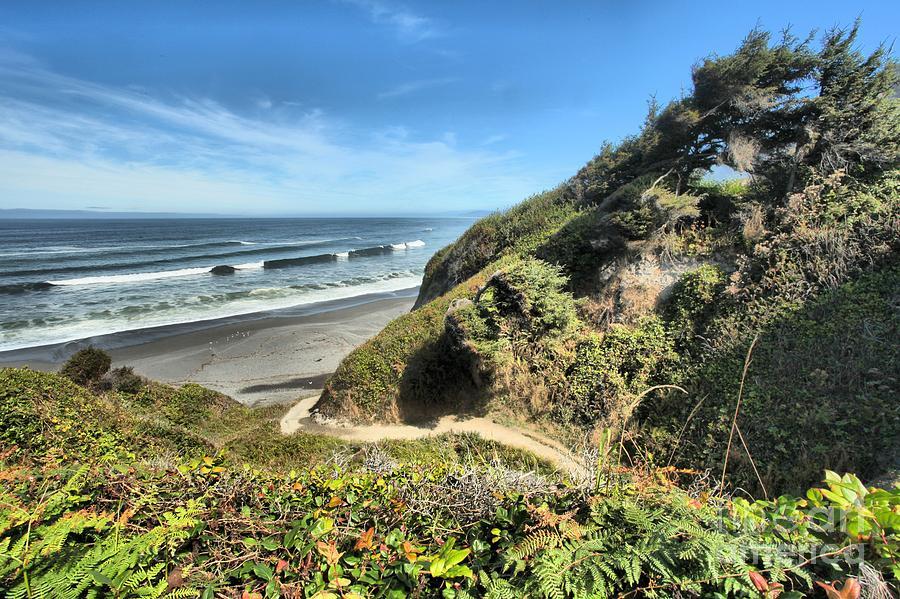 California Beaches Photograph - Patricks Point by Adam Jewell