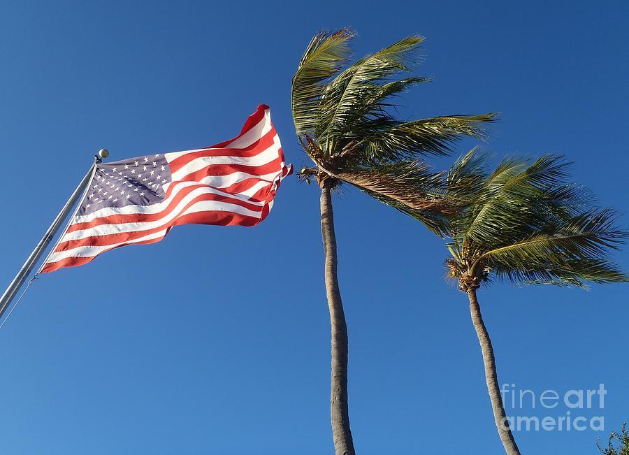 Flag Photograph - Patriot keys by Carey Chen