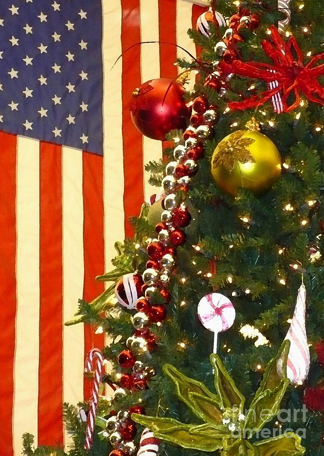 Patriotic Christmas Photograph by Carol Groenen