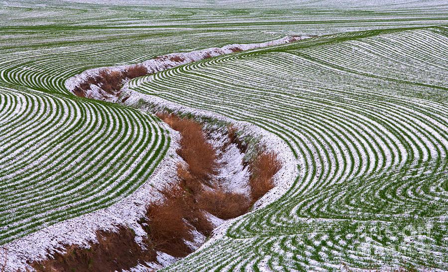Landscape Photograph - Patterns 2 by Don Hall