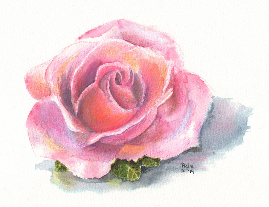 Pattie's Rose by Pris Hardy