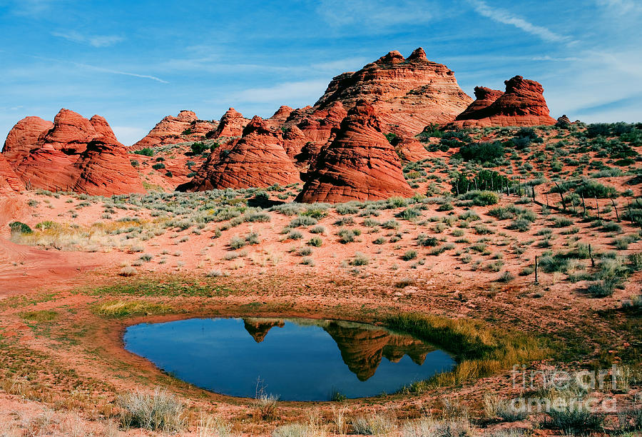 Coyote Buttes Photograph - Paw Hole Reflections by Mike  Dawson