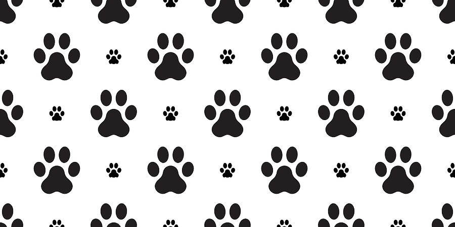 Paw Vector Dog Paw Seamless Pattern French Bulldog Isolated Wallpaper Background White By Cnuisin