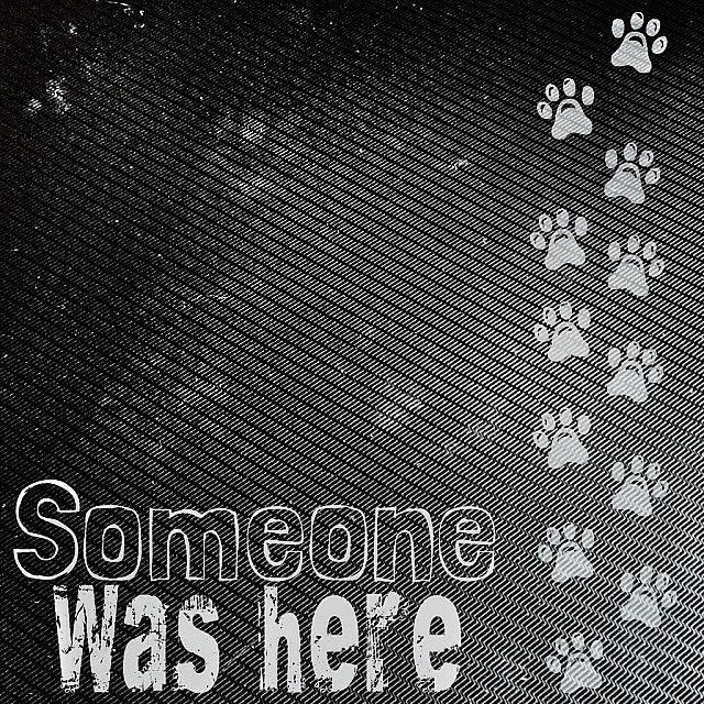 Sweet Photograph - #pawprints On My #laptop Hmmmm, Wonder by Teresa Mucha