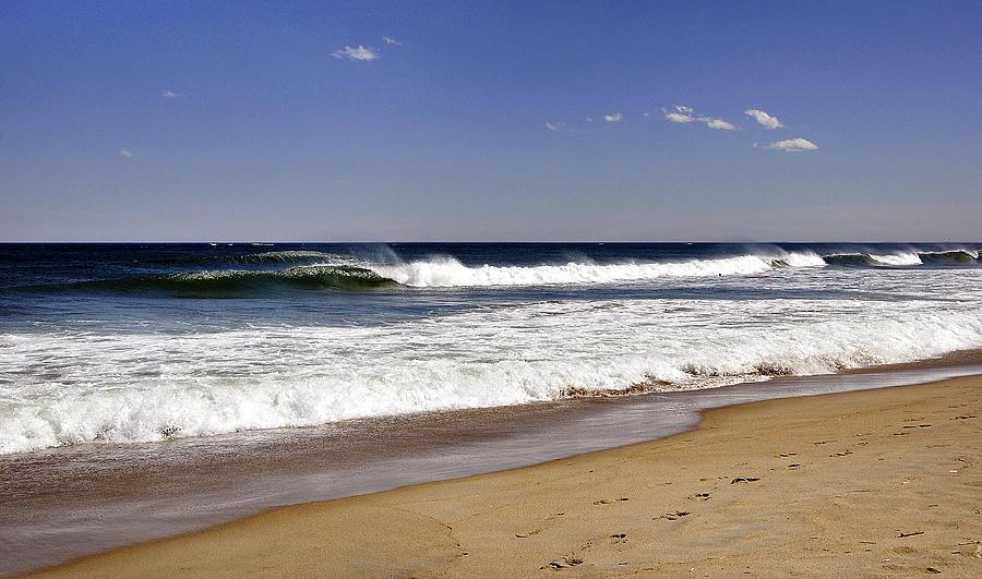 Shoreline Photograph - Peace Shores by Joanne Brown