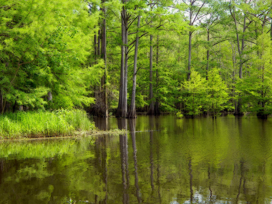 Lake Photograph - Peaceful Afternoon by Ester  Rogers