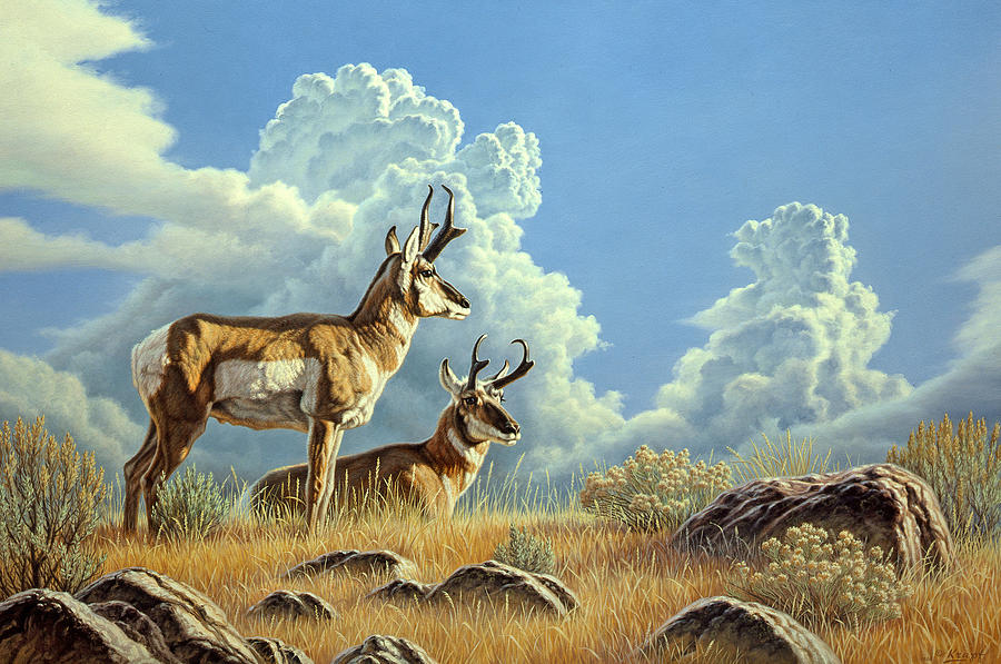 Wildlife Painting - Peaceful Afternoon by Paul Krapf