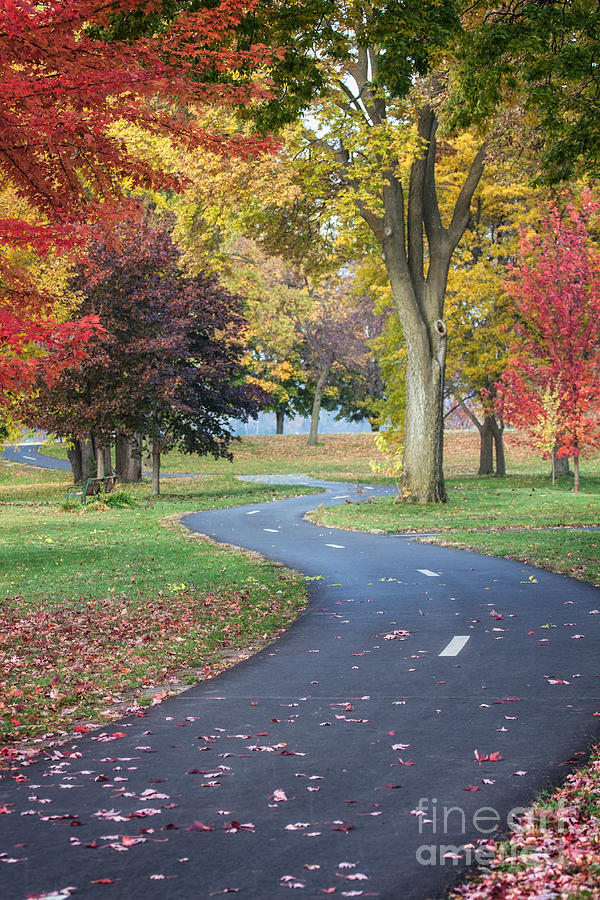 Winona Minnesota Photograph - Peaceful Autumn Path Winona Photo by Kari Yearous