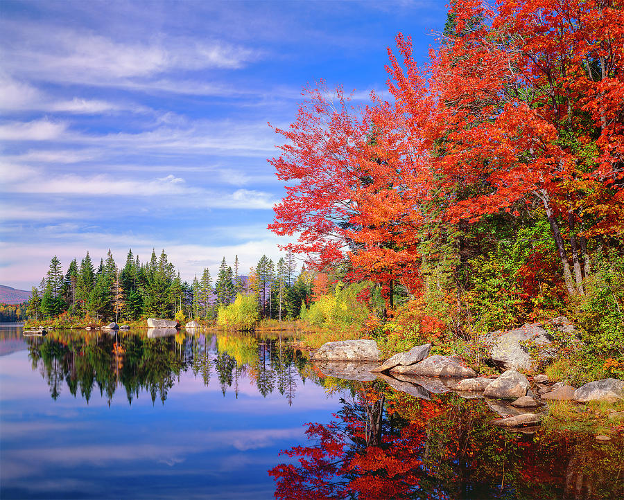 Peaceful Colorful Autumn Fall Foliage Photograph by Dszc