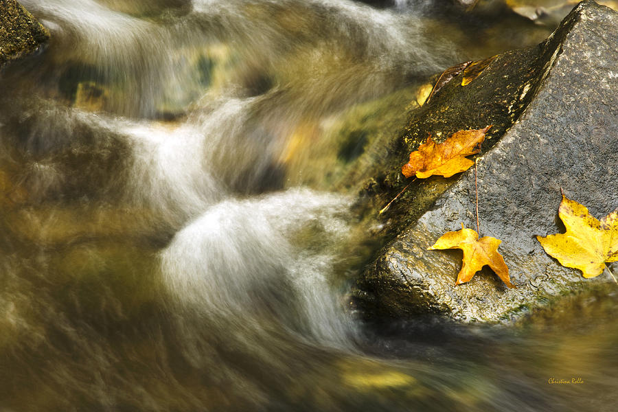 Fall Photograph - Peaceful Creek by Christina Rollo