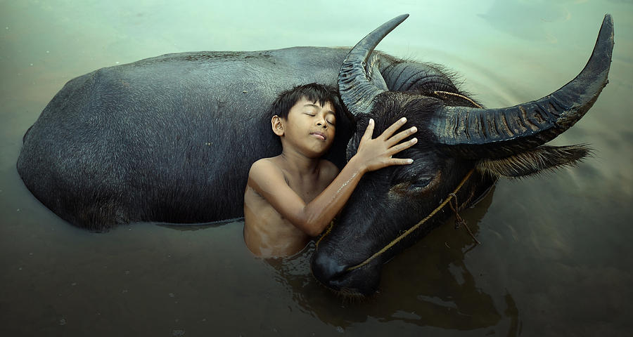 Peaceful Photograph - Peaceful by Fahmi Bhs