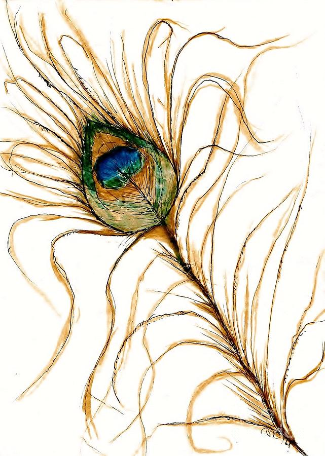 Peacock Feather 2 by Anne Clark