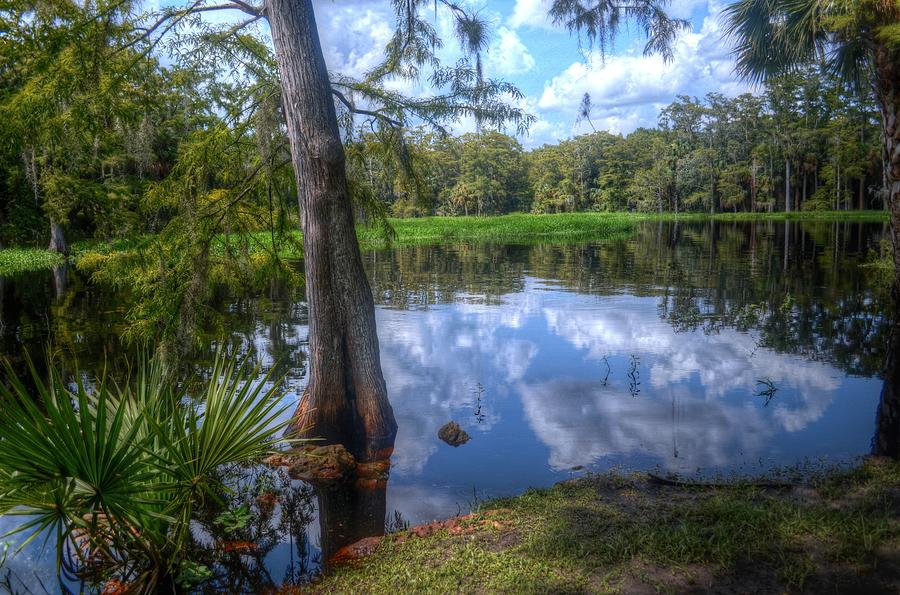 Florida Photograph - Peaceful Florida by Timothy Lowry