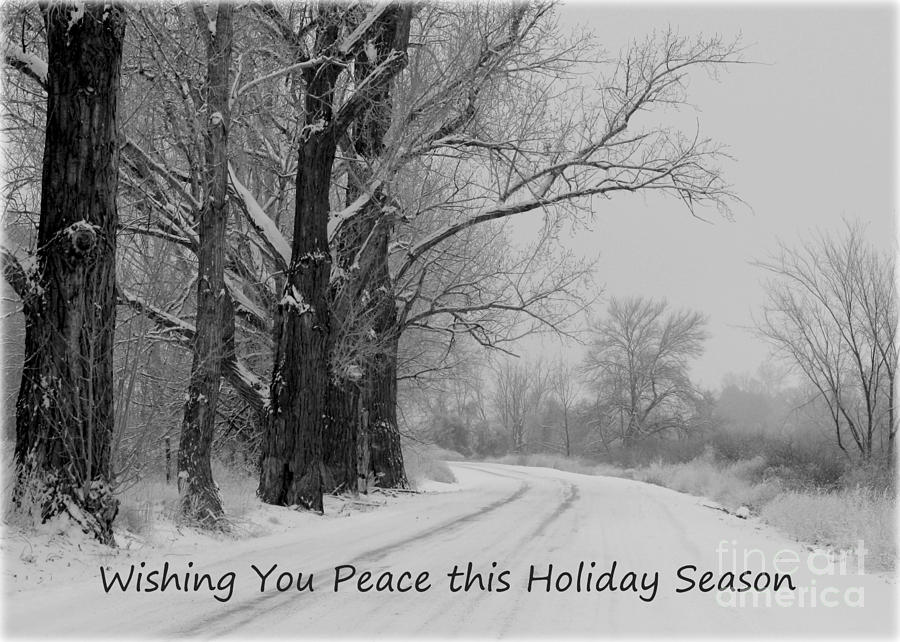 Winter Photograph - Peaceful Holiday Card by Carol Groenen