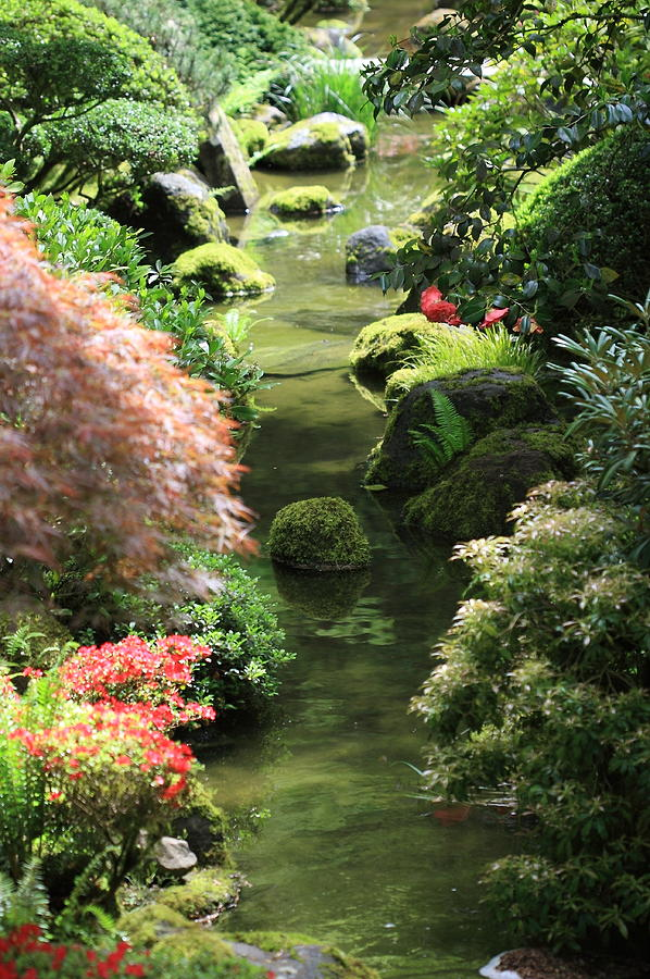 Japanese Garden Photograph - Peaceful River by Carrie Warlaumont