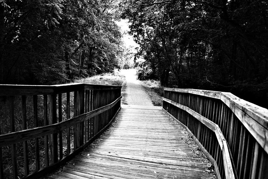 Woods Photograph - Peaceful Walkway Blackwhite by Stephanie Grooms