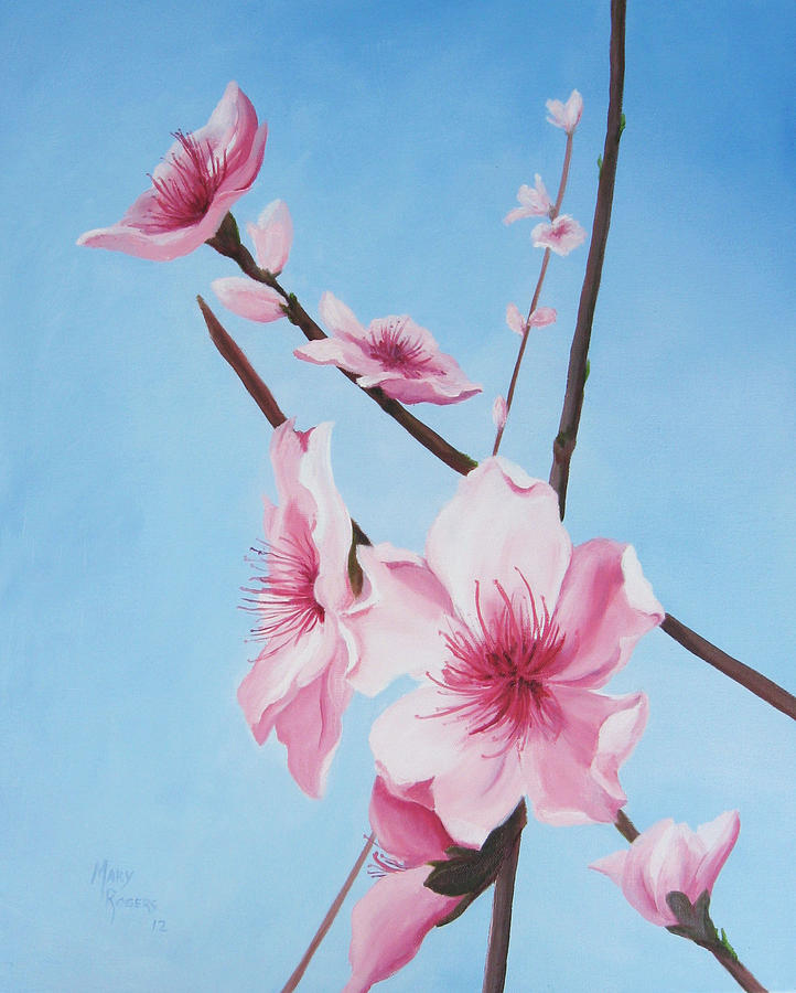 Nature Painting - Peach Blossoms by Mary Rogers
