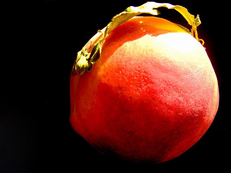 Still Life Photograph - Peach Mohawk by Susan Duda