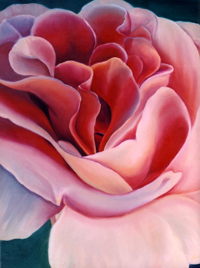 Flowers Painting - Peach Rose by Anni Adkins