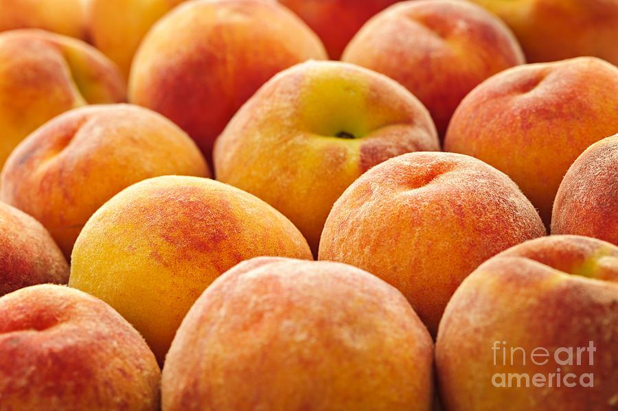 Peaches Photograph - Peaches by Elena Elisseeva