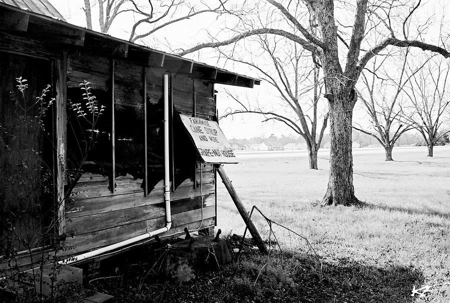 Milledgeville Photograph - Peaches by Katie Farmer