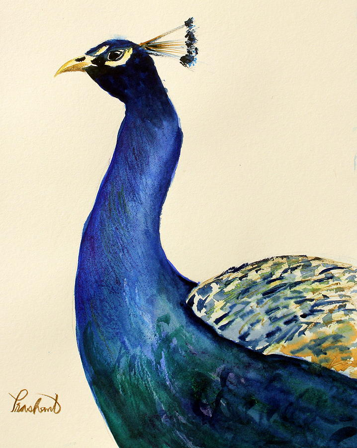Peacock Painting - Peacock Portait by Prashant Shah