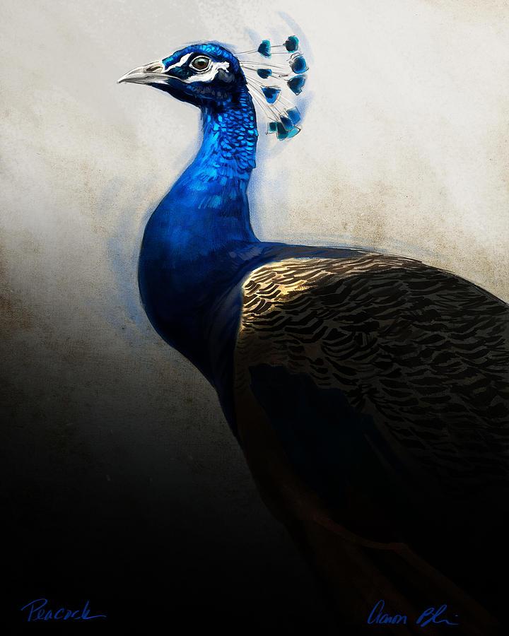Peacock Digital Art - Peacock Portrait by Aaron Blaise