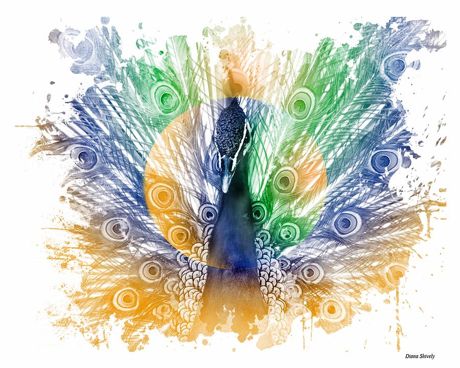 Bird Digital Art - Peacock Splash by Diana Shively