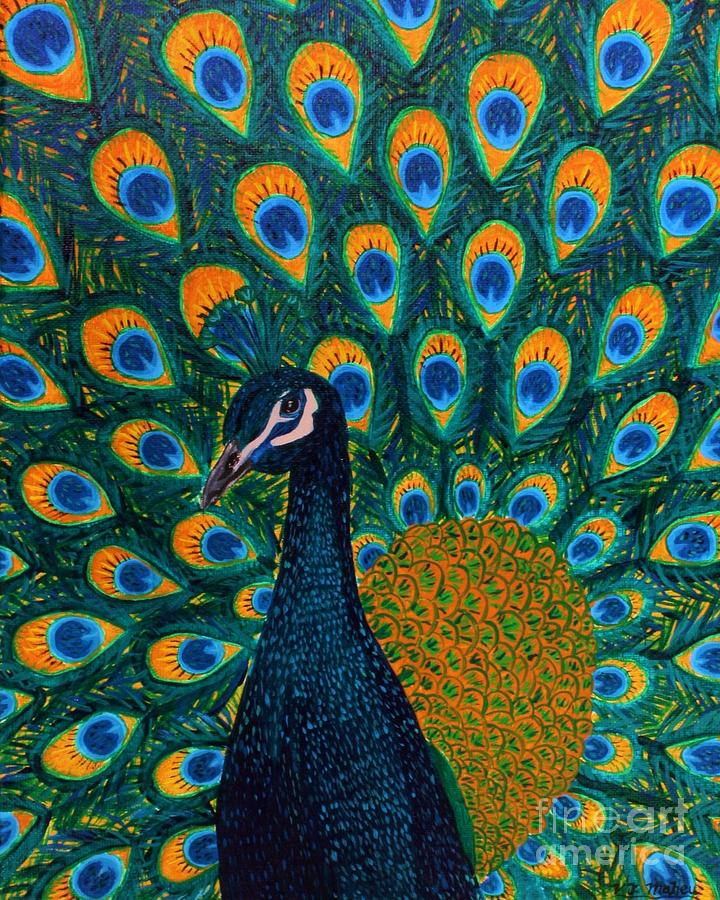 Peacock by Vicki Maheu
