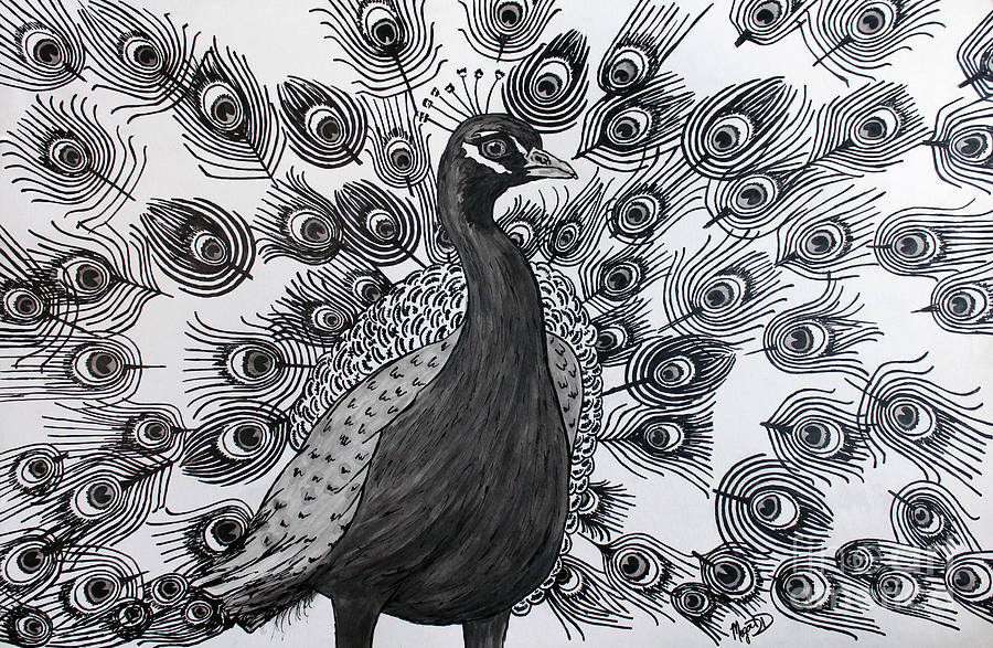 Line Drawing Peacock : Peacock walk drawing by megan dirsa dubois