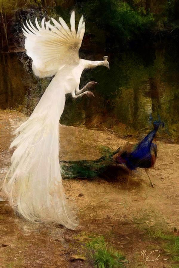Peacocks Painting - Peacocks by David Derr