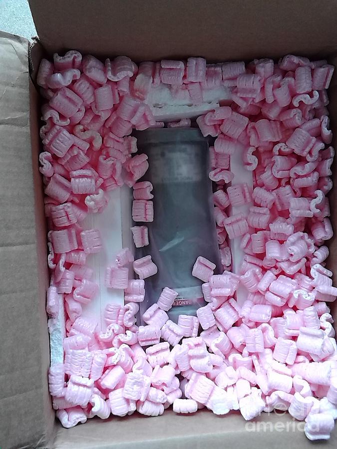 Peanuts In A Box Photograph
