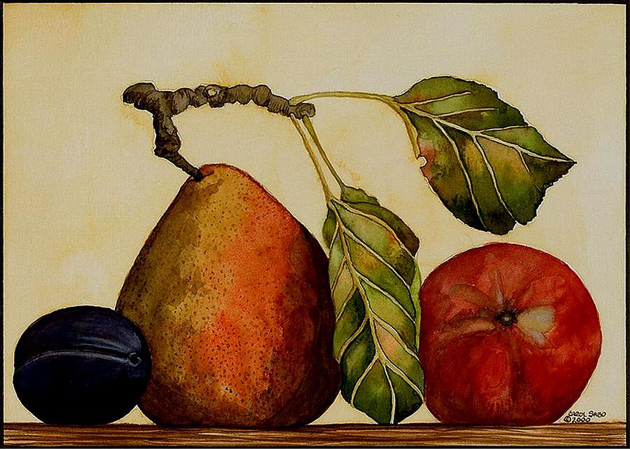 Pear Plum Apple Painting By Carol Sabo