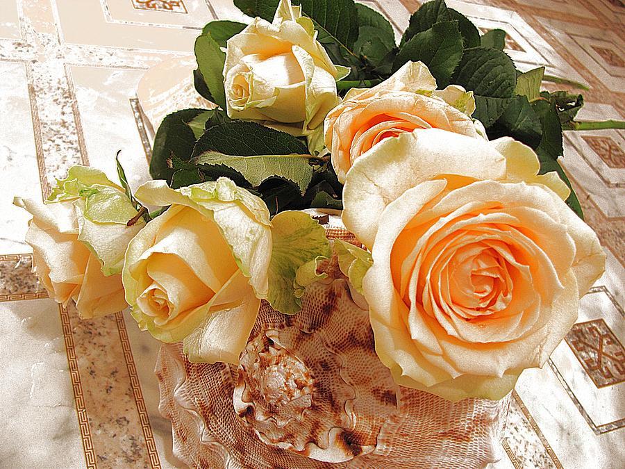 Beautiful Photograph - Pearl Roses by Halyna  Yarova