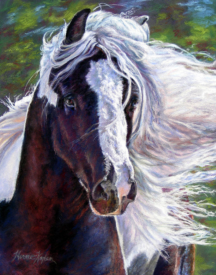 Pearlie King Gypsy Vanner Stallion by Denise Horne-Kaplan