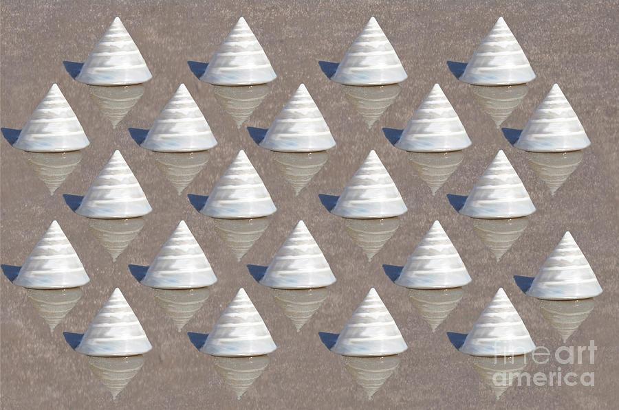 Seashells Photograph - Pearlized Tectus Fenestratus by Josephine Cohn