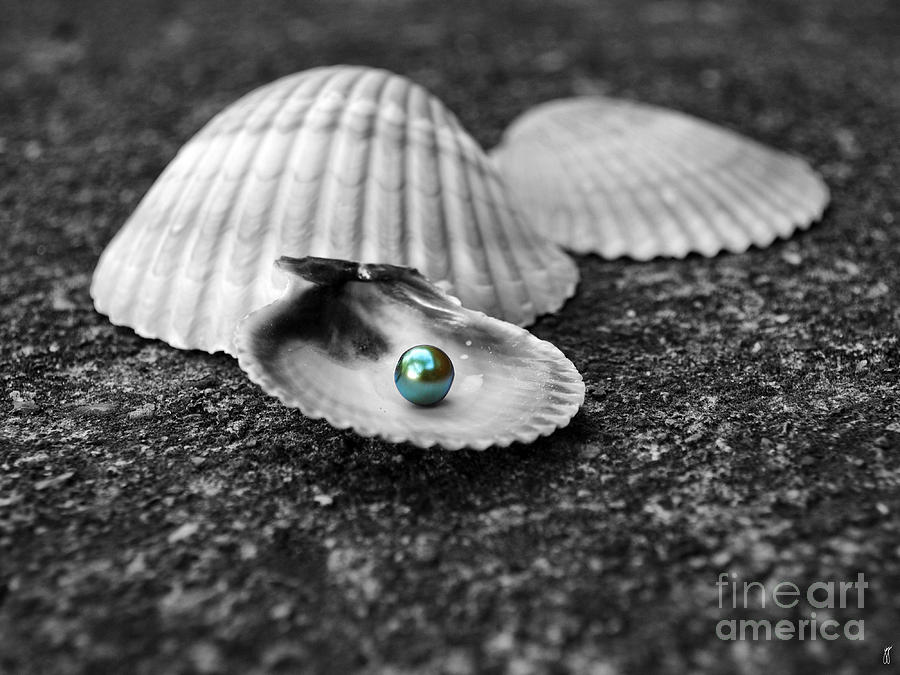 Pearl Photograph - Pearls Of Wisdom I by Jai Johnson