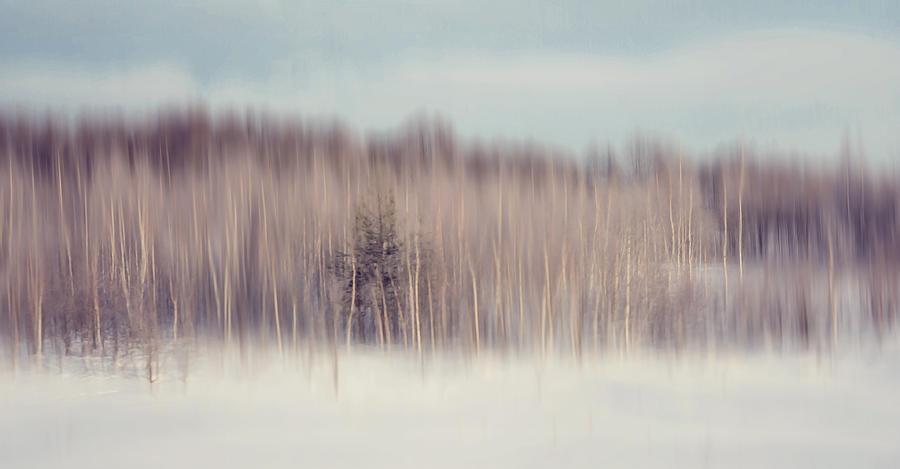 Impressionism Photograph - Pearly Winter. Impressionism by Jenny Rainbow