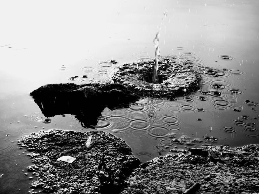Black And White Photograph - Pebble Splash by David Stewart