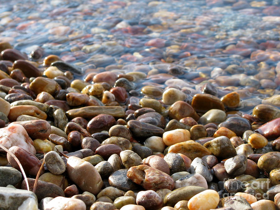 Pebbles Photograph - Pebbles On The Shore by Leone Lund