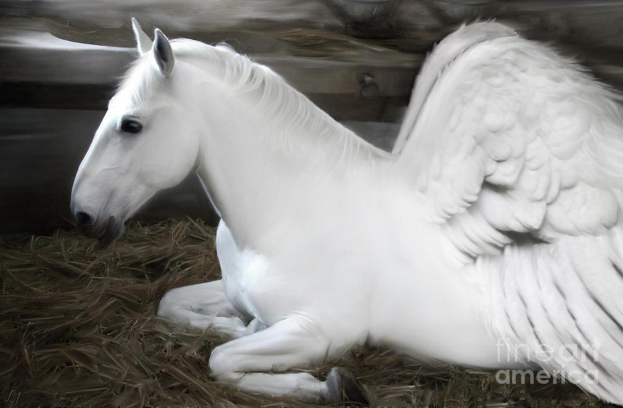 Pegasus Painting - Pegasus by Lynn Jackson