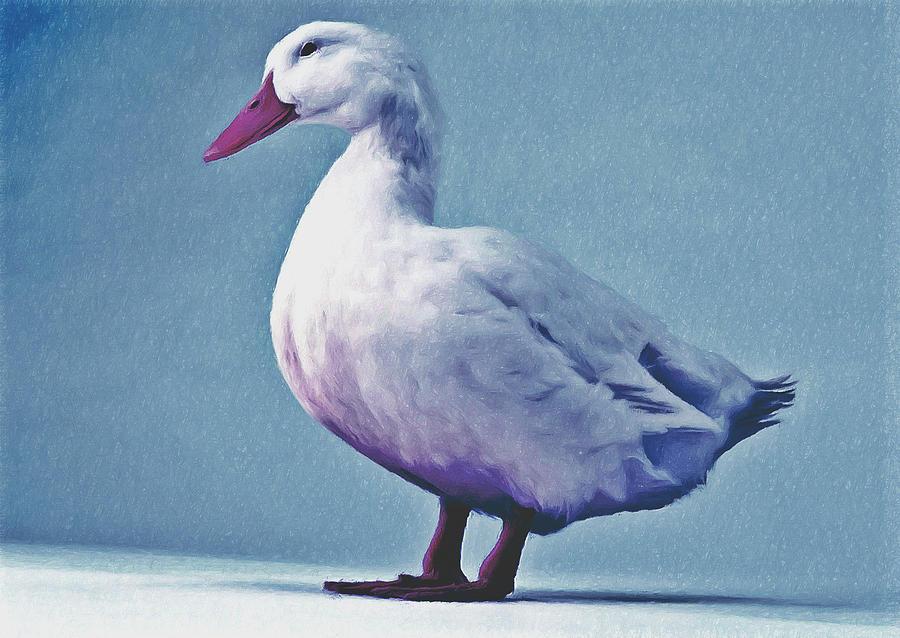 Animal Painting - Pekin Ducks 2 by Lanjee Chee