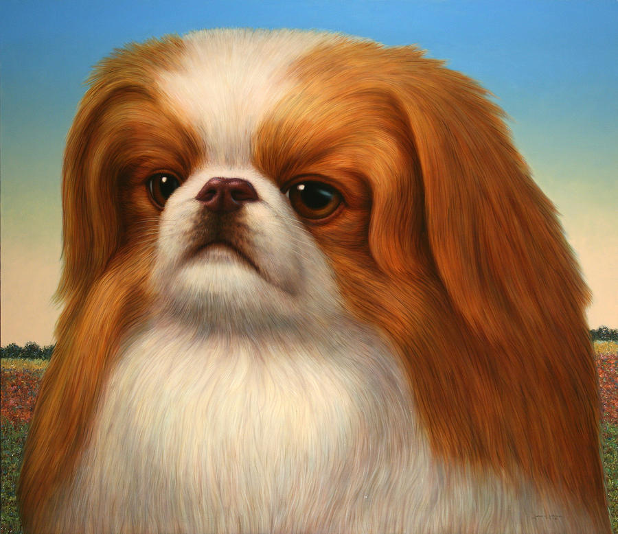 Pekingese Painting - Pekingese by James W Johnson