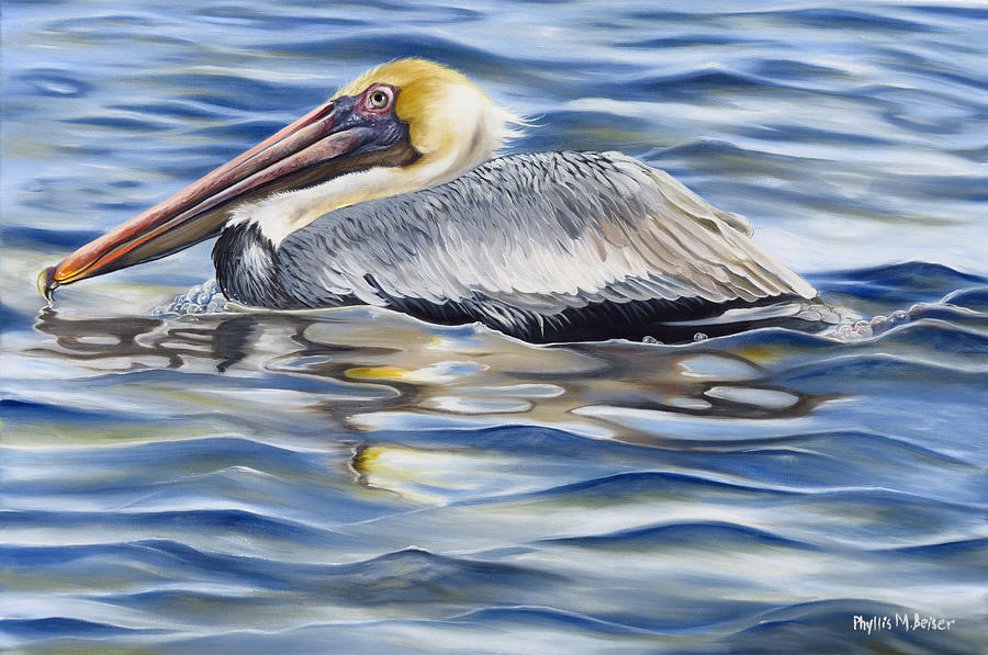 Birds Painting - Pelican At Cedar Point by Phyllis Beiser