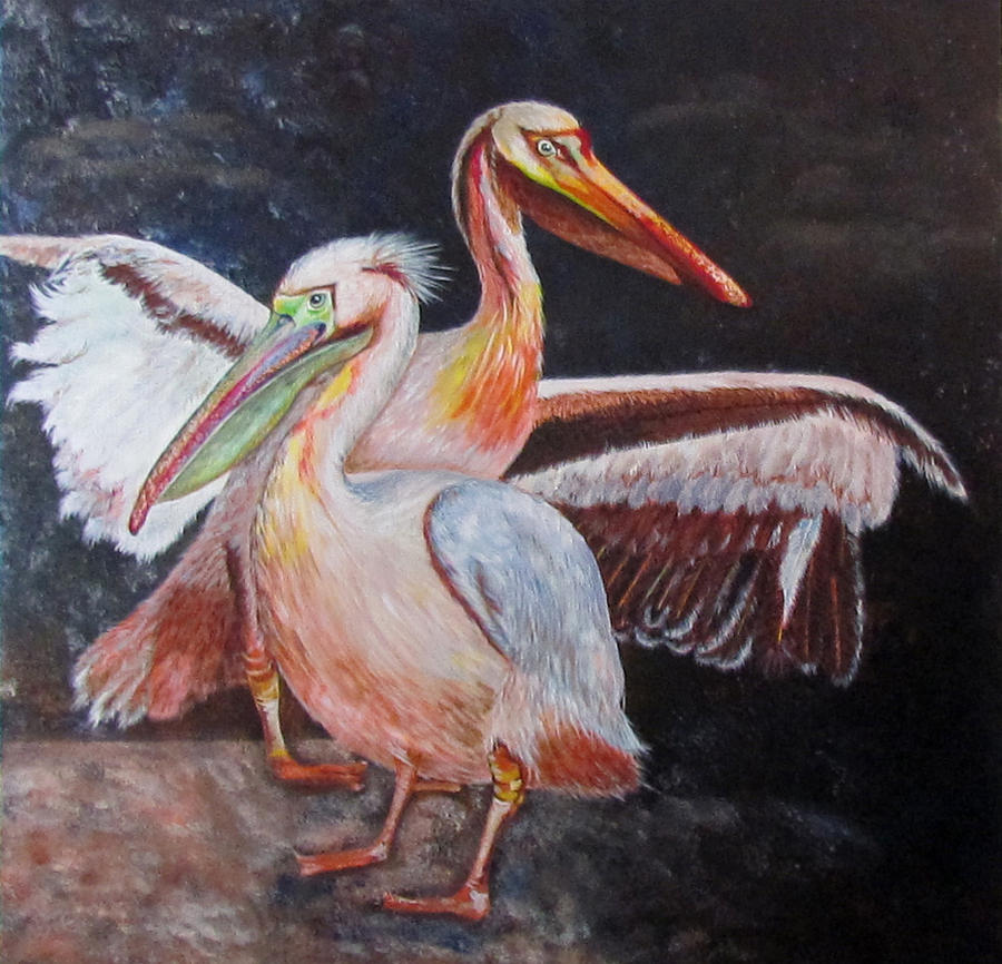 Pelican Pair by Susan Duxter