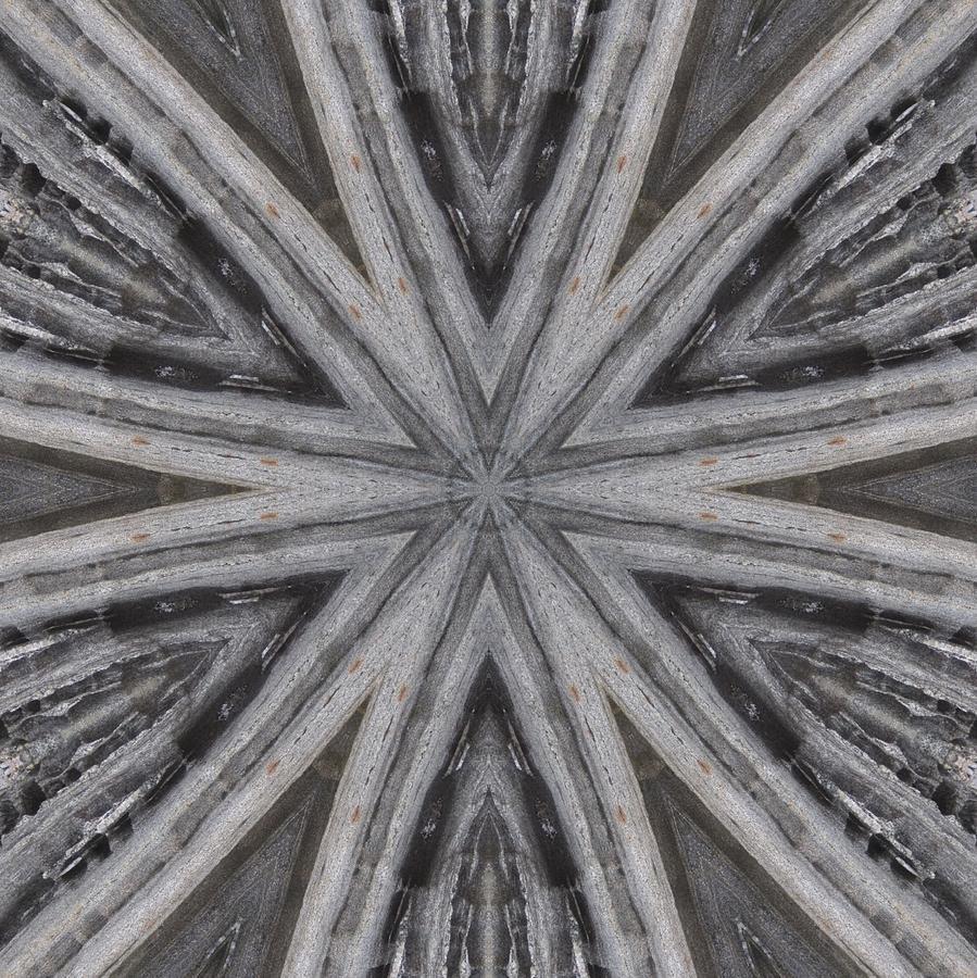 Pemaquid Rock Five by Trina Stephenson