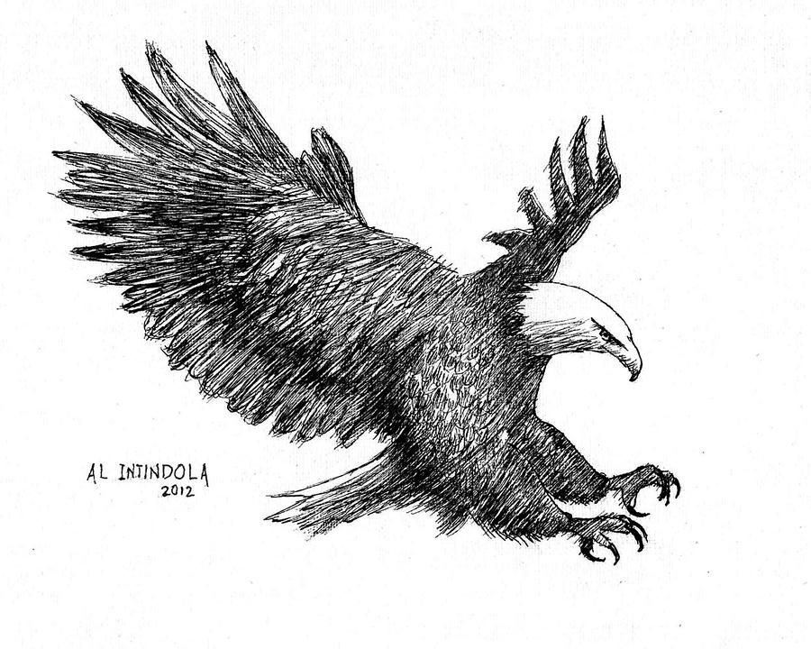pen and ink bald eagle drawing by al intindola